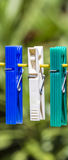 Clothes pegs on a line. Row of three clothes pegs hanging on a yellow line in a garden with blurred background Royalty Free Stock Images