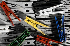 Clothes Pegs Stock Image