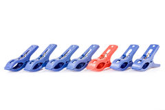 Clothes pegs  in a row Royalty Free Stock Image