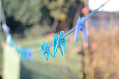 Clothes pegs on washing line. Blue clothes pegs on washing line with blurred background Royalty Free Stock Image