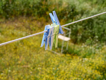 Clothes pegs on the washing line. In my house Royalty Free Stock Photo