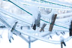 Clothes pins on frozen laundry line Stock Photography