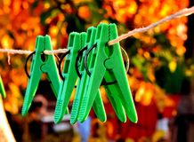 Clothes pins on line rope on background of golden leaves. stock image