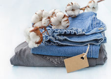 Clothes with a sprig of cotton Royalty Free Stock Photography