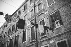 clothesline Imagem de Stock