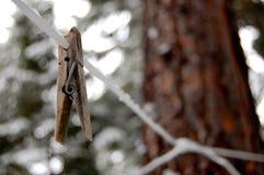 clothesline Lizenzfreie Stockbilder