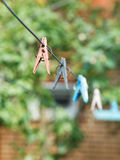 Clothesline with clothespins on backyard Royalty Free Stock Image