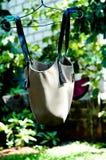 Clothesline d'attaccatura del sacchetto Fotografia Stock Libera da Diritti
