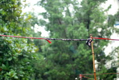 Clothesline in the rain Stock Image