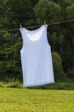 Clothesline and shirt. Royalty Free Stock Photography