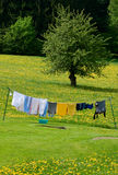 Clothesline in a Spring Field. Clothesline with different colored Colothes in a Spring Field Stock Photos