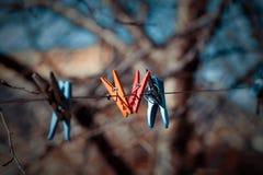 Clothespegs Imagem de Stock Royalty Free