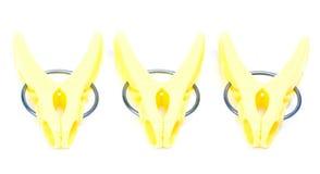 Clothespegs gialli immagini stock