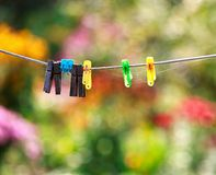 Clothespin. autums sun day. naiture . color leaf. Stock Photo
