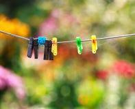 clothespin giorno del sole dei autums naiture Foglia di colore fotografia stock