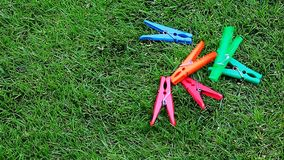 Clothespin green grass background nobody hd footage. Day light stock footage