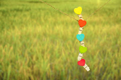 The clothespin with hearts hanging on a clothesline. Amid the verdant fields Royalty Free Stock Photos