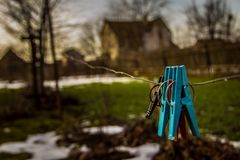 clothespins Zdjęcie Royalty Free