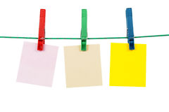 Clothespins With Blank Message Cards royalty free stock photo