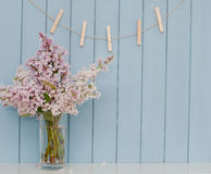 Clothespins and bunch of lilac Royalty Free Stock Photo