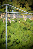 Clothespins on a Clothesline Royalty Free Stock Photography