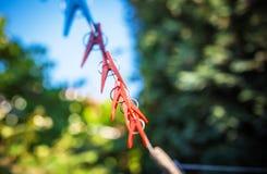 Clothespins em uma corda Foto de Stock Royalty Free