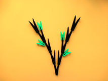 Clothespins in the form of plants. Creative mind Stock Photo