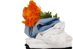 Clothings background. Home clothing background and bloom Stock Images