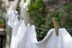 Clothline z Drewnianymi czopami Fotografia Stock