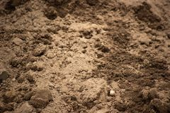 Clots of ground in the excavated surface. Clots of earth in the excavated surface royalty free stock photo