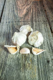Clou de girofle d'ail et épluché sur le vieux fond en bois Image libre de droits