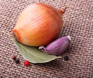 Clou de girofle d'ail, oignon sur le fond de toile de jute Photographie stock