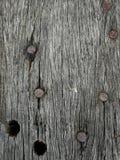 Clou sur le macro en bois Images libres de droits