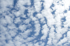 Cloud. Royalty Free Stock Photography