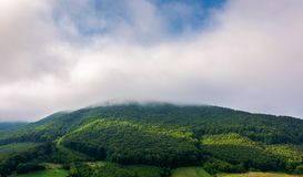 Cloud above the forested hill. Beautiful countryside scenery royalty free stock photo