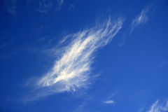 Cloud in a blue sky Royalty Free Stock Images