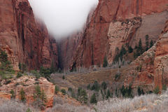 Cloud in a canyon Zion National Park stock image