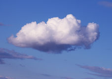 Cloud closeup, dark blue sky Stock Images