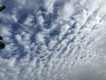 Cloud. Cotton cloud . Amazing sky. Heaven Royalty Free Stock Images