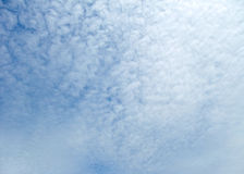 Cloud cover. Full frame sky background with fine clouds Royalty Free Stock Images