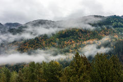 Cloud covered fall forest at the Bridal Veil Falls Provincial Pa Royalty Free Stock Images