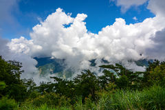 Cloud covered mountaintop in Alishan National Forest in Chiayi District, Taiwan Royalty Free Stock Photos