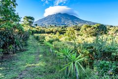 Cloud covered volcano, meadow & orchard, Guatemala Stock Photography