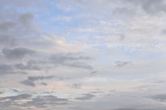 Cloud at evening. Royalty Free Stock Photo