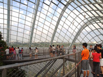 Cloud Forest. Is located at Gardens By The Bay, Singapore Stock Images