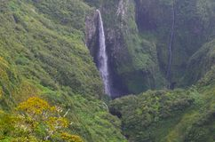 Cloud forests and waterfalls in Rèunion national park. A cloud forest, also called a water forest, is a generally tropical or subtropical, evergreen, montane stock photo