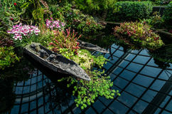 Cloud Forest Dome at Garden by the bay. Singapore – 25 March 2016: Small pond with plants and reflection in Cloud Forest Dome at Garden by the bay. A man made Stock Photography