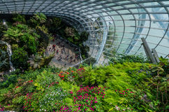 Cloud Forest Dome at Garden by the bay. Singapore – 25 March 2016: Tropical mountain along with plants and water fall in Cloud Forest Dome at Garden by the bay Royalty Free Stock Photography