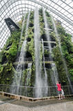 Cloud Forest Dome at Garden by the bay. SINGAPORE – 25 March 2016: Tropical mountain along with plants and water fall in Cloud Forest Dome at Garden by the bay Stock Photo
