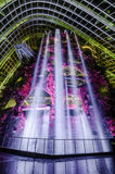 Cloud Forest Dome at Garden by the bay. Singapore – 25 March 2016: Tropical mountain along with plants and water fall in Cloud Forest Dome at Garden by the Stock Image